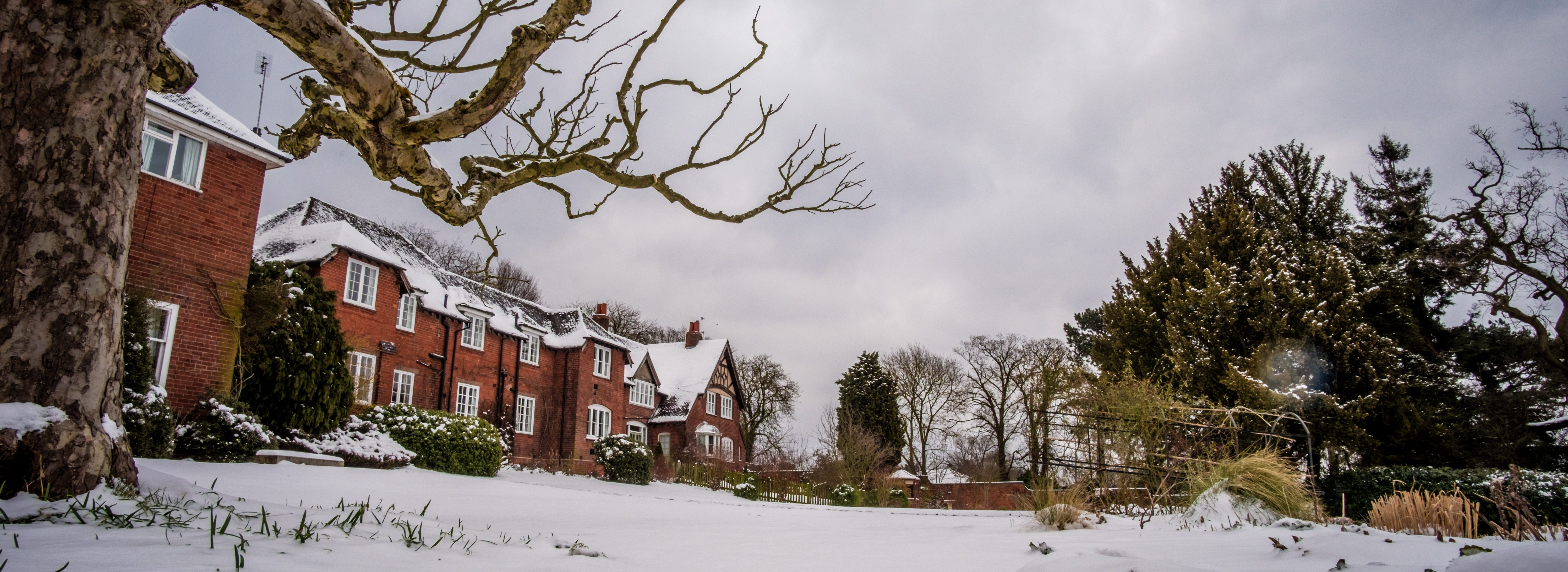 Woodbrooke (Holland House) in the Snow